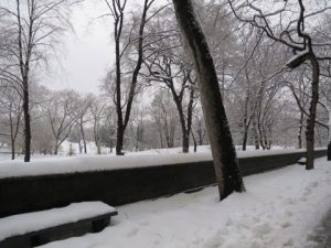 雪景色のセントラルパーク
