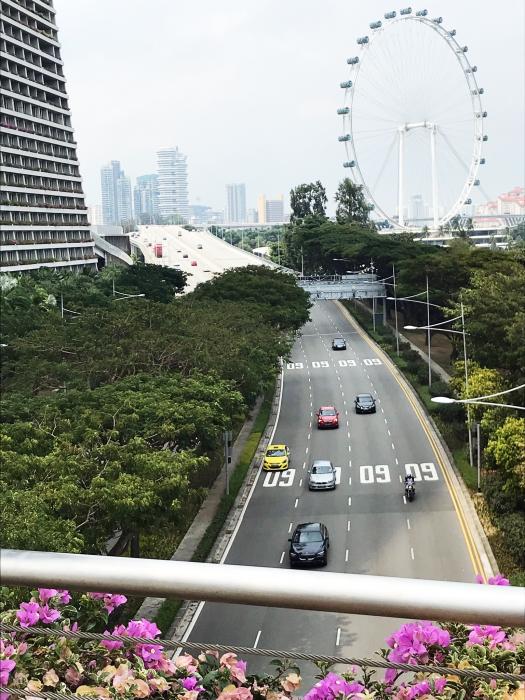 幹線道路と観覧車